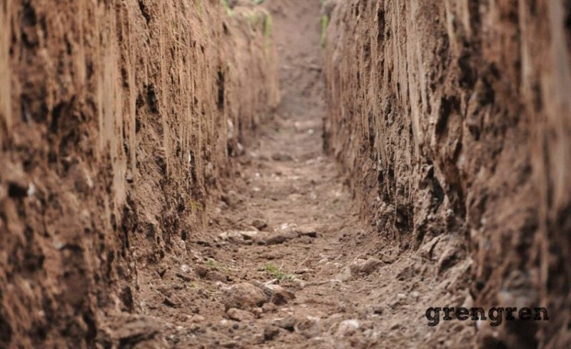 粘土質の土壌内部