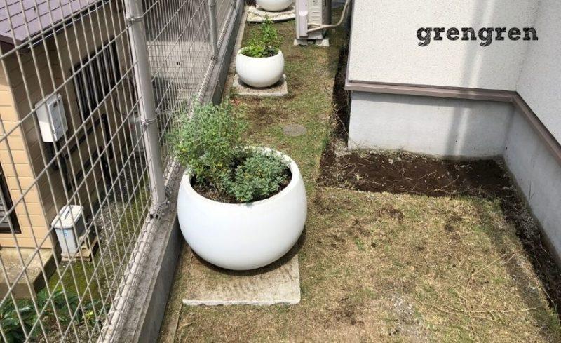 芝と雑草を刈ったあとの南側の横浜市のお庭