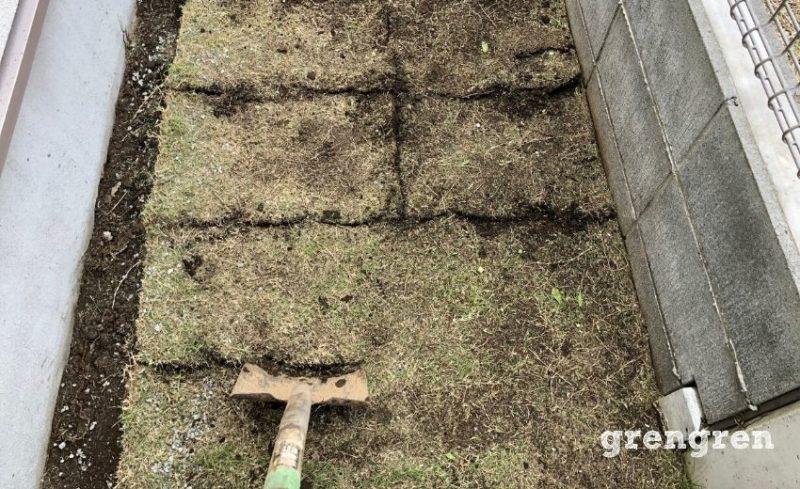 芝生の切れ目からシャベルを差し込む芝生のはがし方