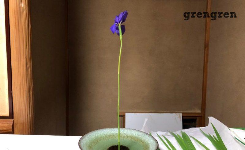 初夏のカキツバタは基本的な生花の生け方で真を生けたところ