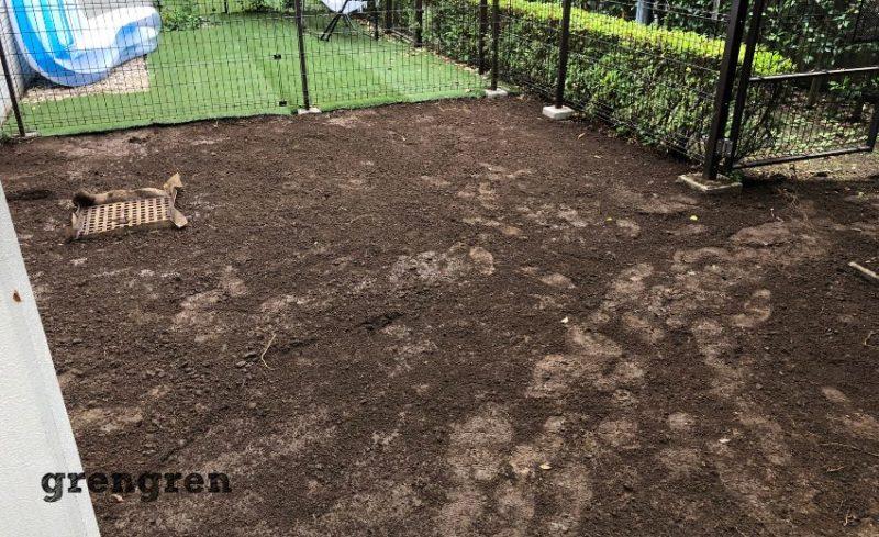 丁寧に石やゴミを除去した世田谷区の人工芝の庭づくり