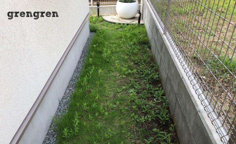 新緑の6月は雑草の季節でもある横浜市の個人邸のお庭