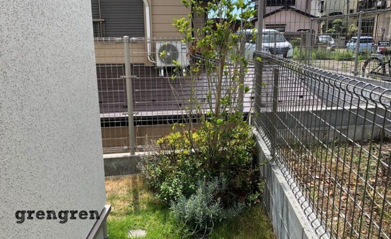 管理が行き届いていない横浜市の個人邸のお庭の状態