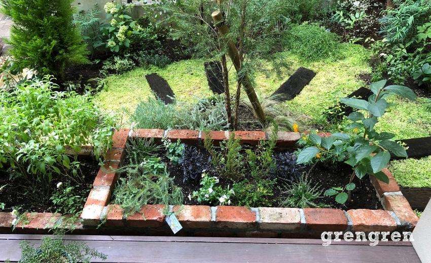 夏の世田谷ガーデンの花壇植栽メンテナンス
