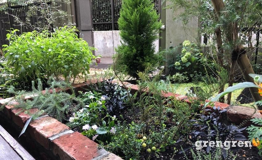 アンティークレンガの花壇の夏の植栽