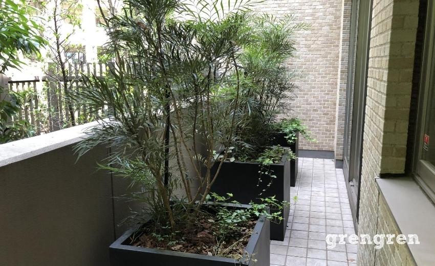 2020年の早春に設置した目隠しのプランター植栽
