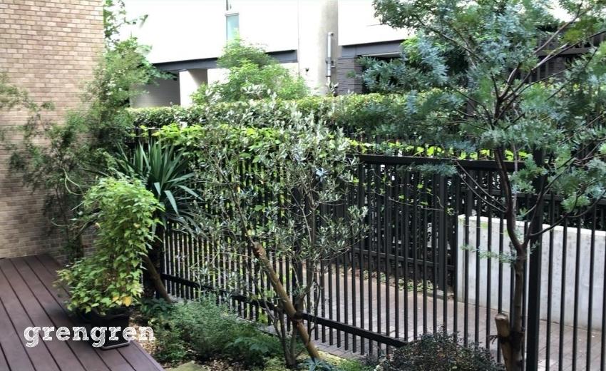 夏のメンテナンスに入った2020年の早春に施工した世田谷ガーデンの様子