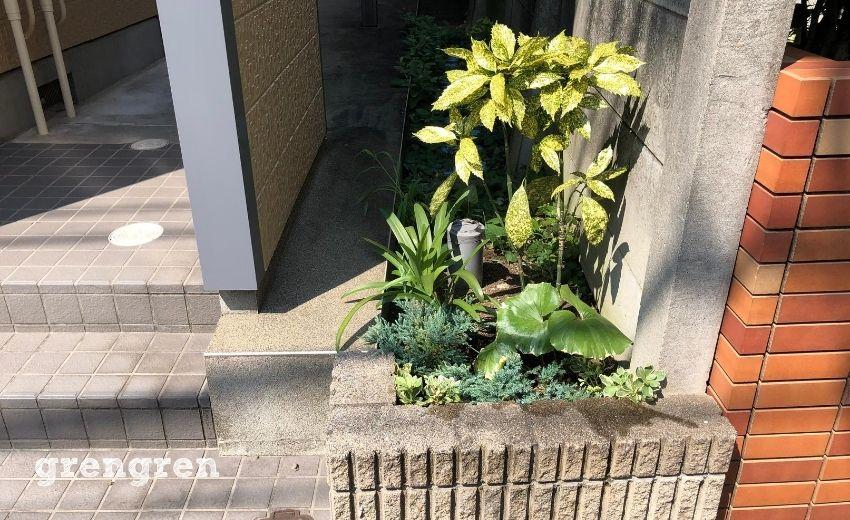 世田谷アパートで一番南側の花壇の剪定後