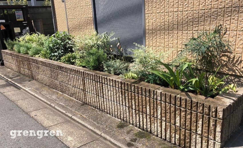2月に植栽を行って安定感が見えてきた8月の世田谷アパートの花壇