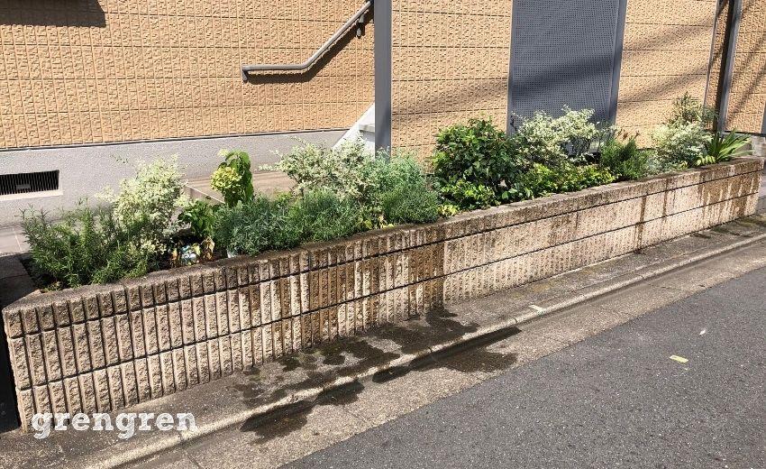 植物の剪定と水やりが終わった世田谷のアパート
