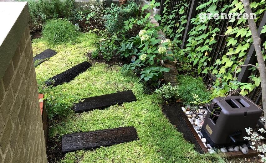 世田谷ガーデンの日向の場所へ続くセダムの小道