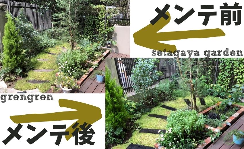 世田谷ガーデンの夏のメンテナンスの施工前と施工後
