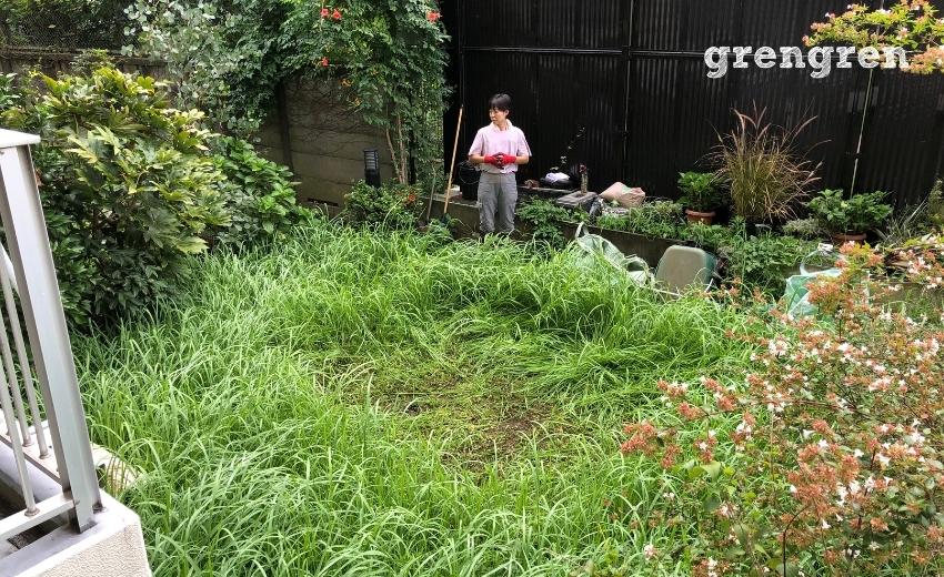 雑草にまみれた杉並区のお庭