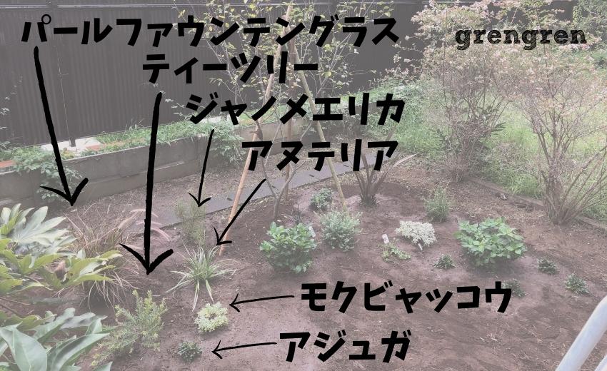 杉並区で植栽した植物の名前