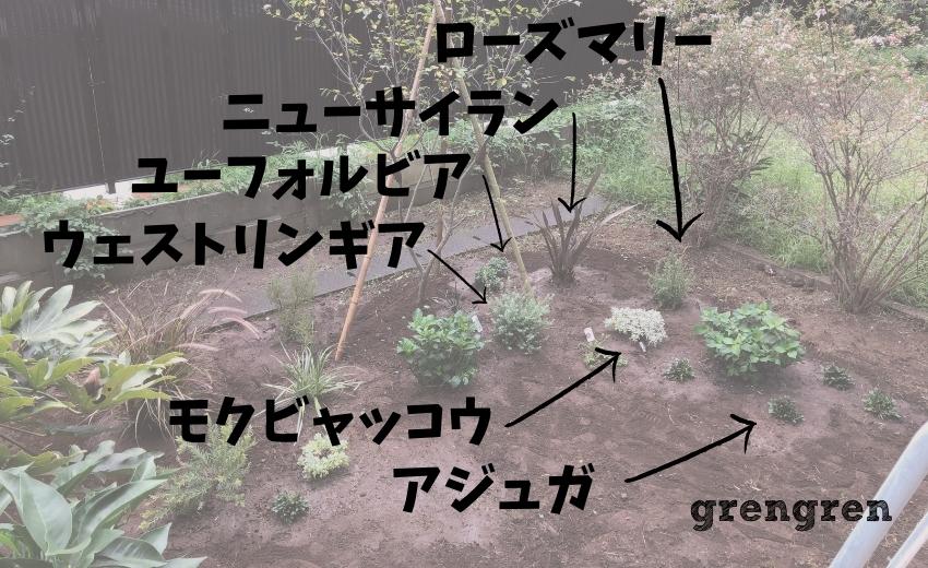 杉並区の植栽工事に使用した植物の名前一覧