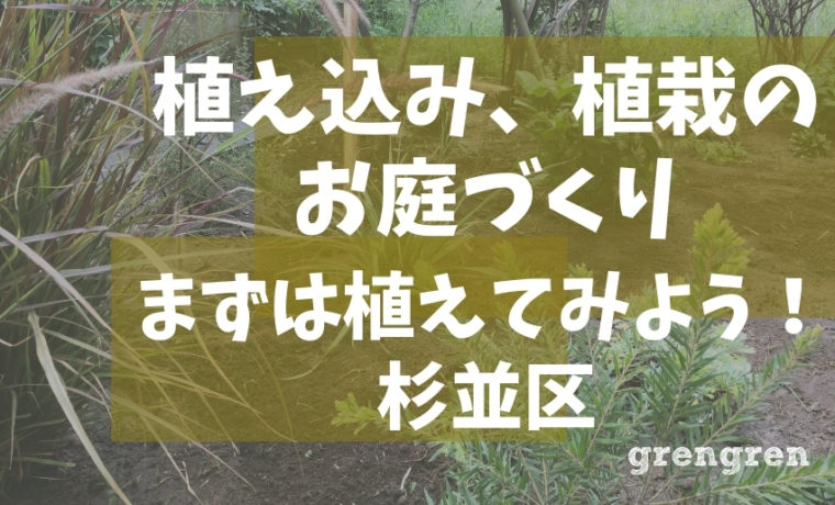 杉並区で行った雑草除去からの植栽お庭づくり