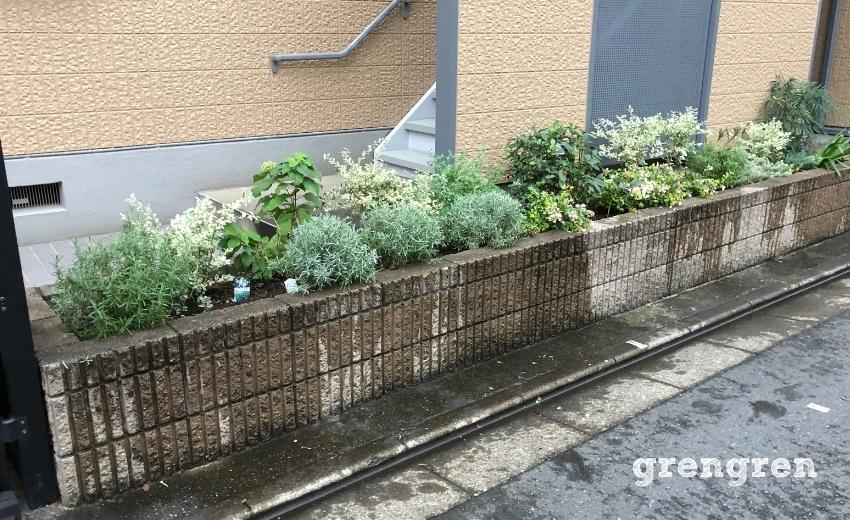 10月の世田谷マンションの花壇のメンテナンス