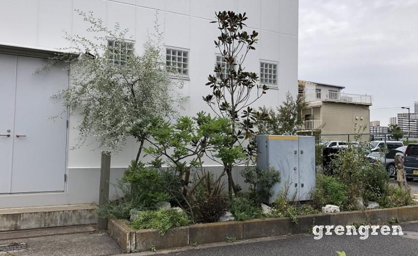 庭づくりから4か月後の江東区のウェルカムガーデン
