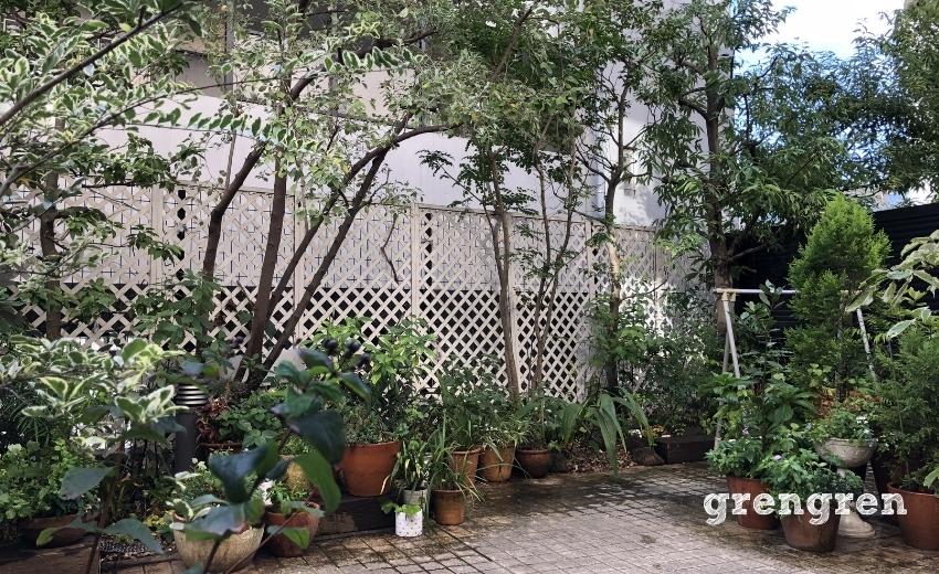 お庭づくりから10年たった港区のお庭