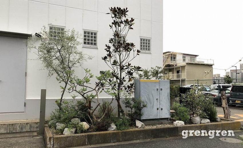 剪定後の江東区のウェルカムガーデンの植栽