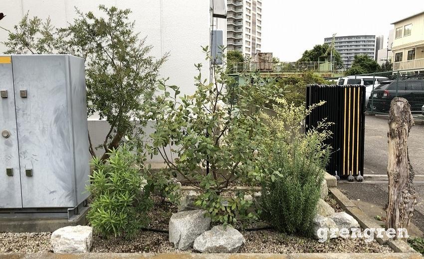 剪定が終わった江東区のウェルカムガーデンの花壇