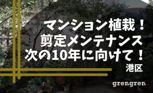 10年たった港区のマンション植栽の剪定メンテナンス
