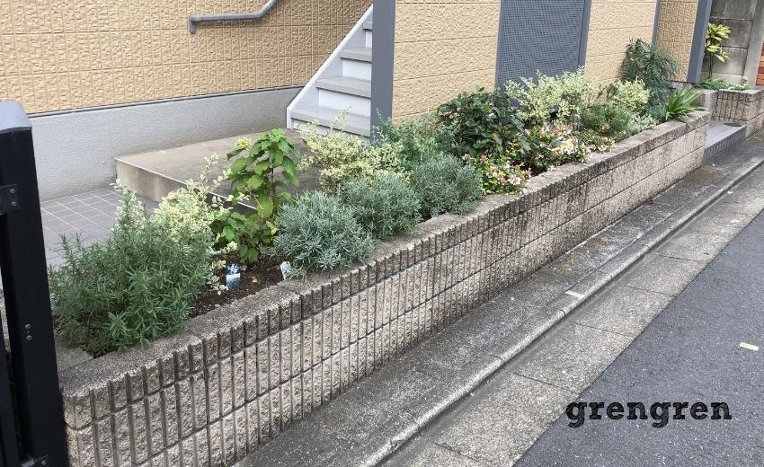 11月の剪定管理が終わった世田谷マンションの花壇