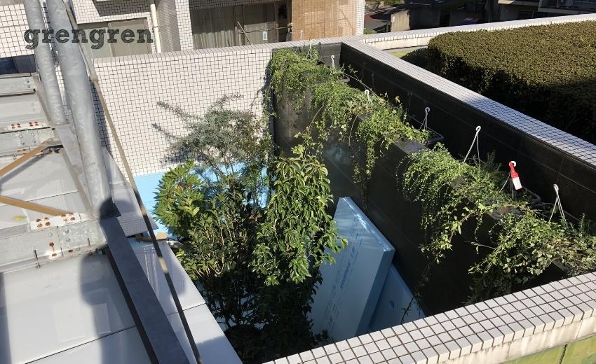 メインの大きな植物が入った世田谷マンションのナチュラルガーデンの庭づくり