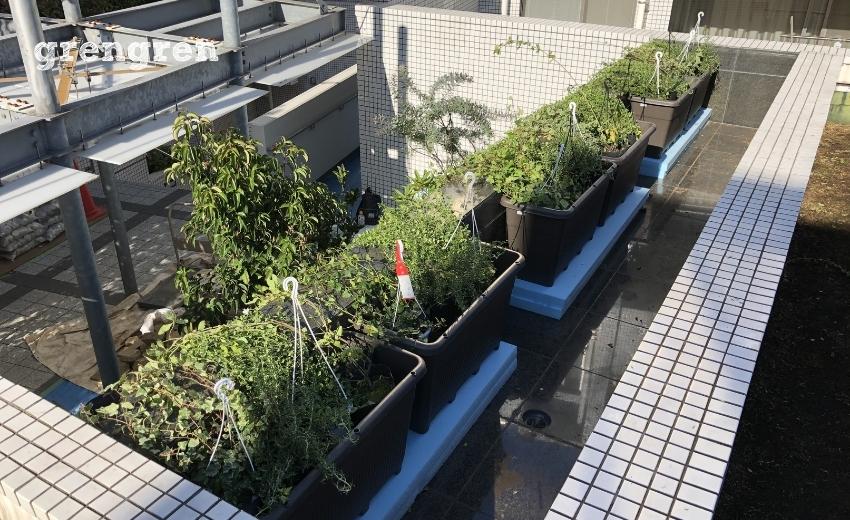 壁の上に設置した下垂体の植物のプランター