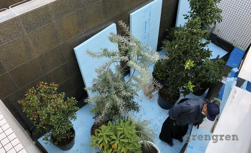 上から見るとよくわかる植物が植えこまれたプランターの配置