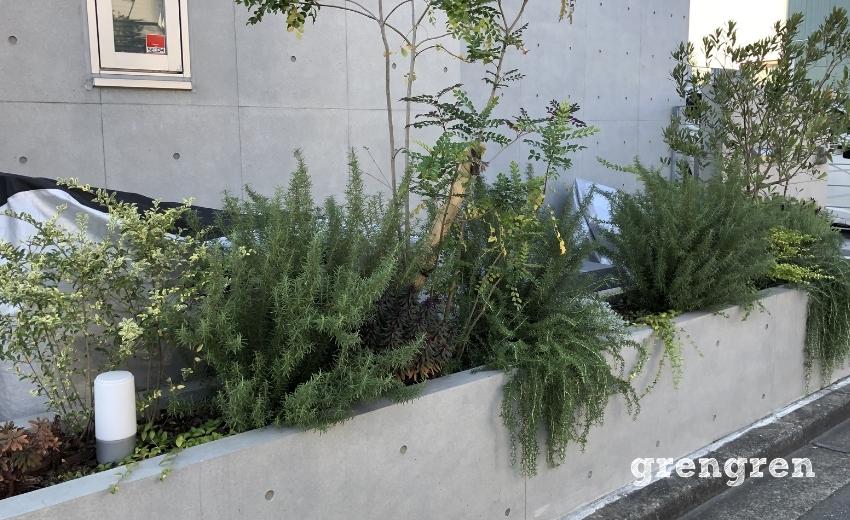 お客さんが希望したモジャモジャした植物の雰囲気がでている北側花壇