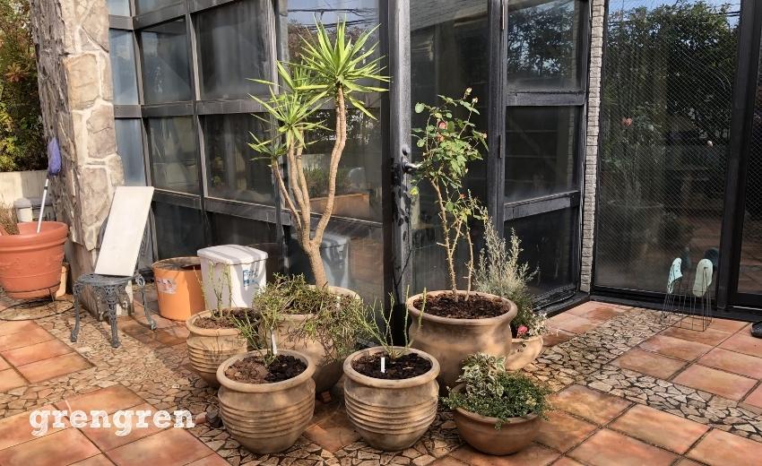 家の角にテラコッタの鉢植えをたくさん集めた鉢植えの庭