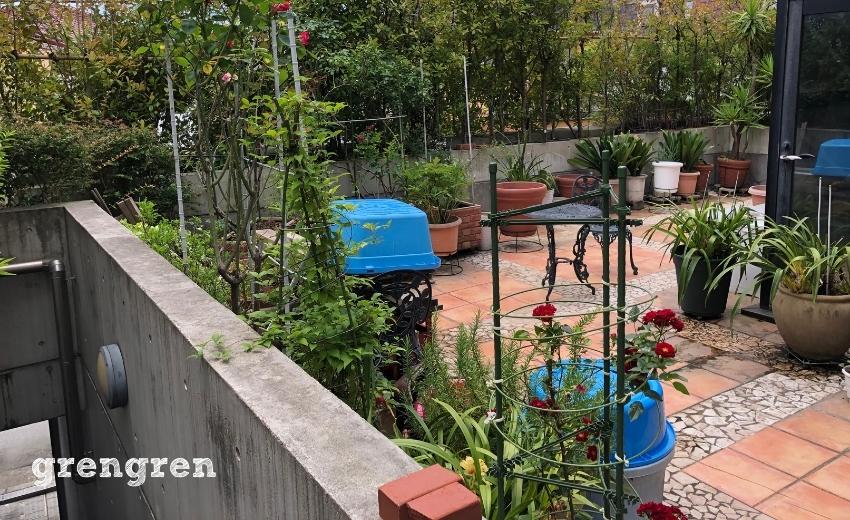 鉢植えがとても数多く整理整頓出来ていない世田谷区のお庭