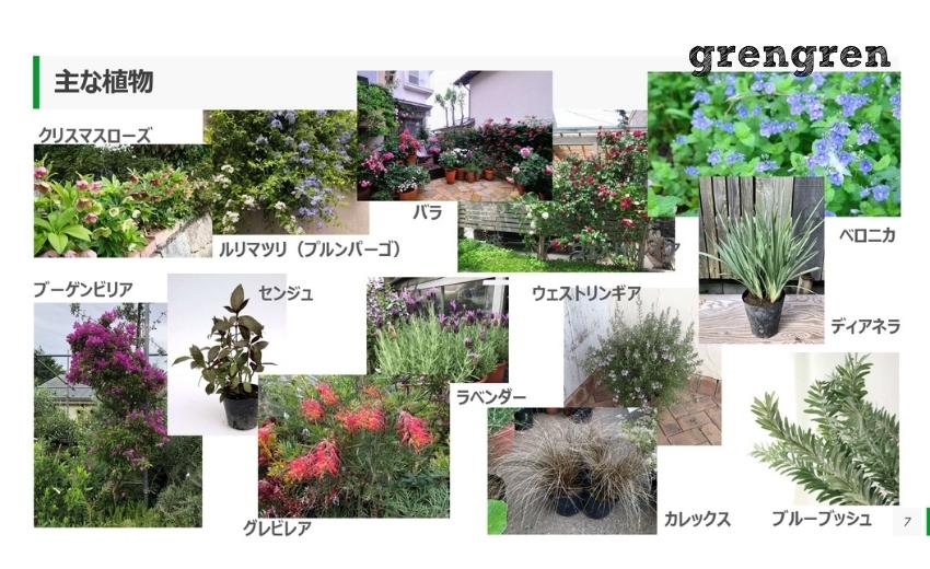 ローズガーデンの庭づくりに使用するための主な植物一覧のプレゼン資料