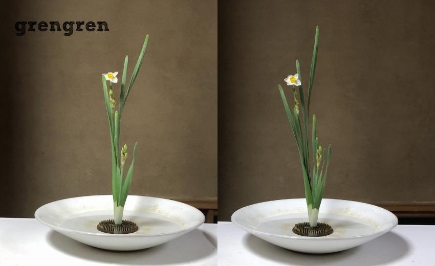 池坊目黒教室で生けた伝花の水仙2株生けの生徒である横田がいけたものとお直し後の比較