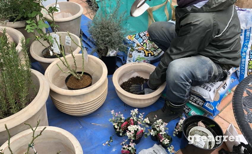 世田谷ローズガーデンのための植栽作業をする職人さん