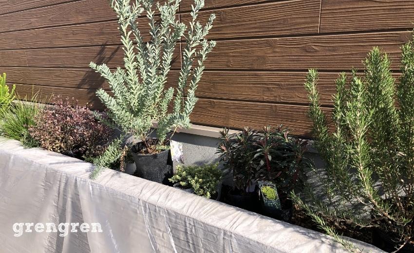 狛江市の新築住宅の花壇で植え込みを行うために場所を決める作業