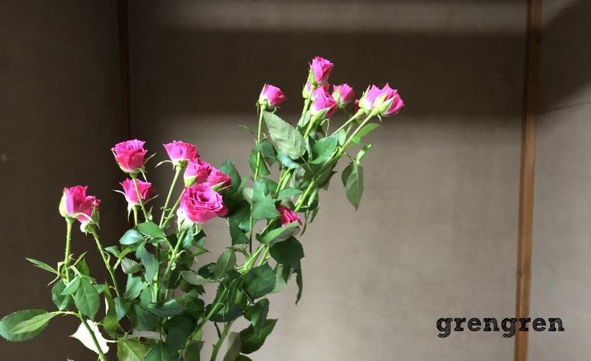 ピンク色のチカラある細かい花が可憐なバラ