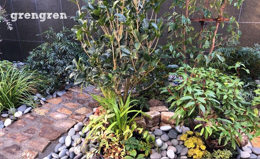 施工から2ヶ月半経過した世田谷マンションのお庭の状態