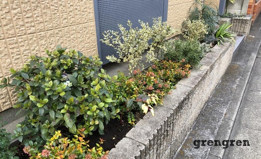 2021年1月のメンテナンスが終了した世田谷マンションの花壇