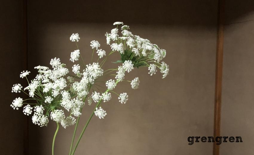 白い細かい花が素敵なブーケに人気のレースフラワー