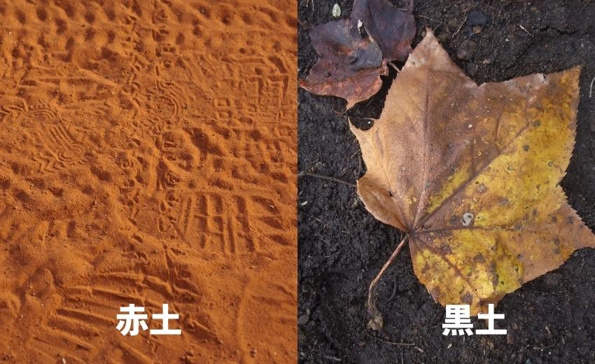 赤土と黒土の写真と解説の画像