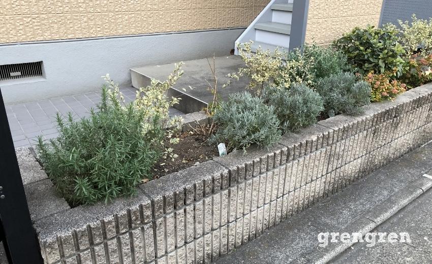 植物の隙間が目立ってきた冬の花壇