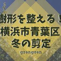 横浜市青葉区で行った樹木の冬の剪定