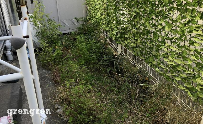 世田谷の個人邸の南側のお庭の施工前の雑草がはびっこった状態