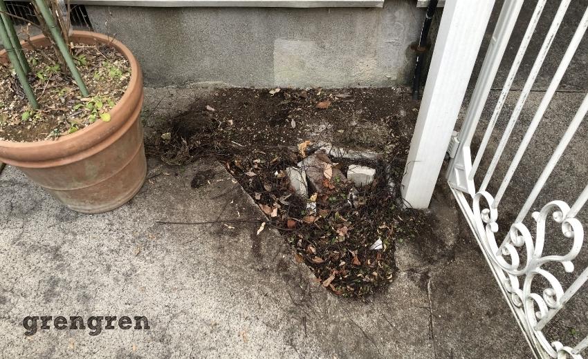 駐車場の角の植物を撤去する