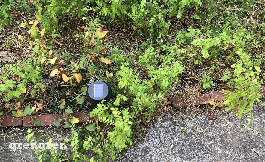 DIYを行った跡がある世田谷の個人邸の庭