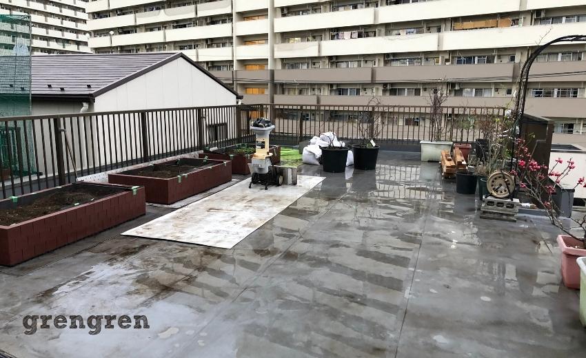 一日目の植栽と移植工が終わった大田区の屋上庭園
