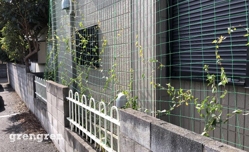 誘引ネットに絡めてつる性の植物を誘引した住宅の東側