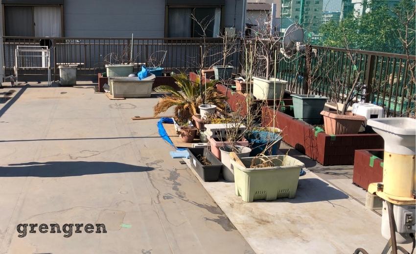 沢山のプランターがある大田区の個人邸の屋上